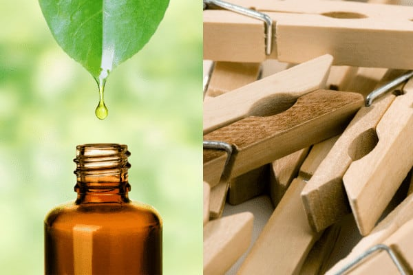 Essential Oil and Clothespins