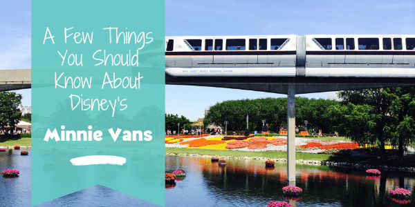 A Few Things You Should Know About Minnie Vans