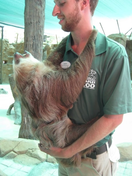 Naples Zoo employee holding a sloth